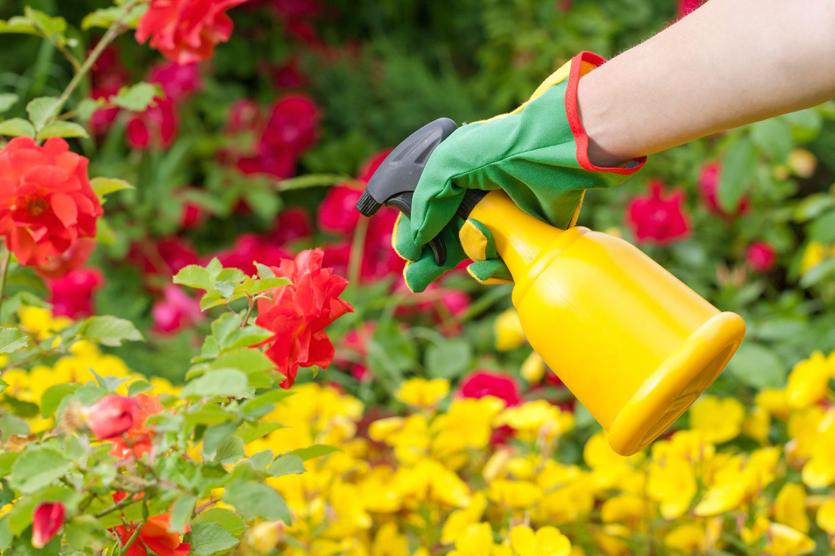 pesticide oil